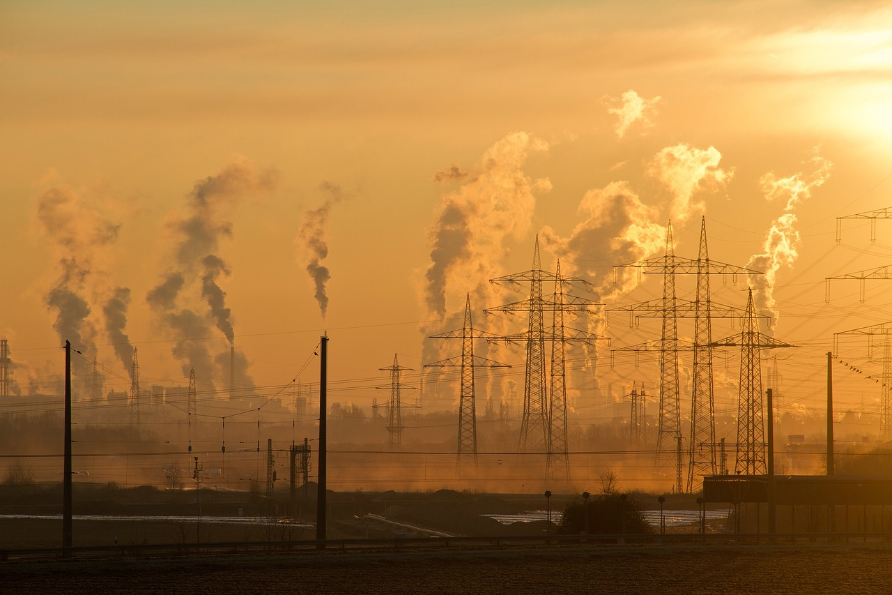 Air Pollution Appears to be an Important Cause of Hair Loss